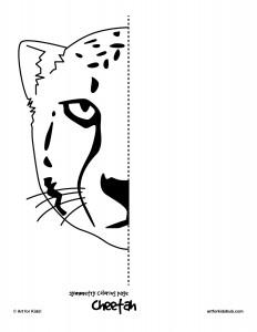 cheetah-symmetry