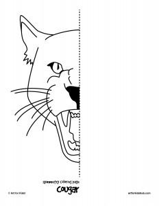cougar-symmetry