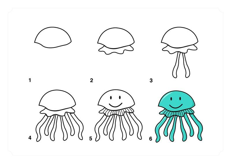 Deniz Hayvanları çizim Teknikleri Basit Hayvan çizimleri Evimin