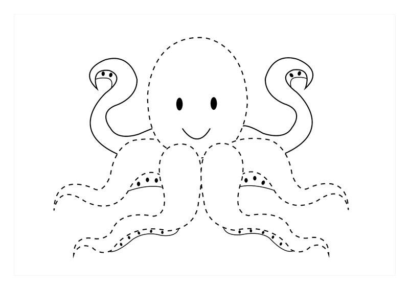 Deniz Hayvanları çizgi çalışmaları Evimin Altın Topu