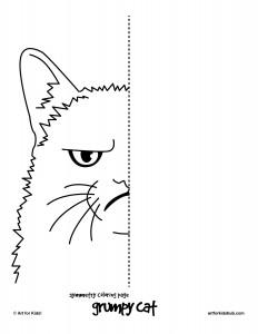 grumpy-cat-symmetry