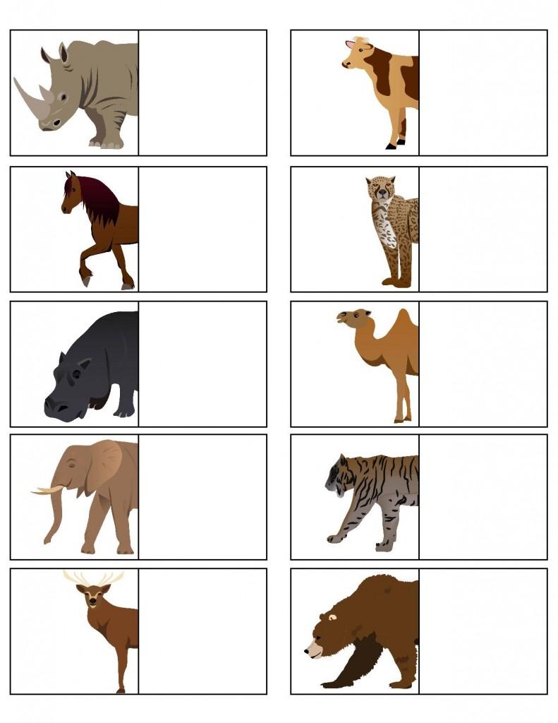 hayvanlar_yarısını_bul_