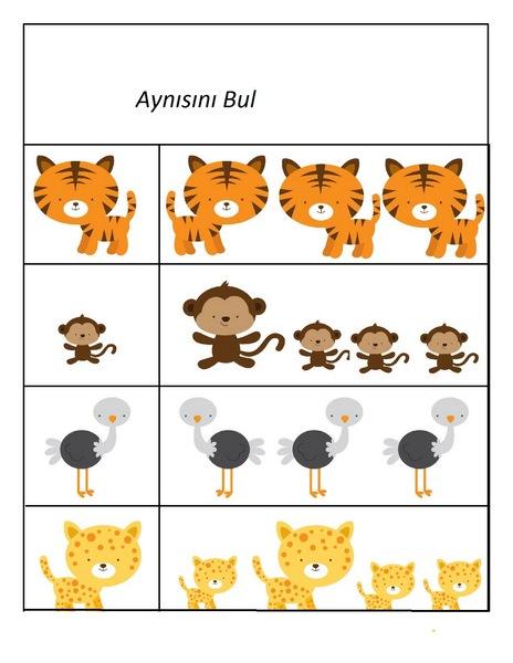Hayvanlar çalışma Sayfaları Evimin Altın Topu