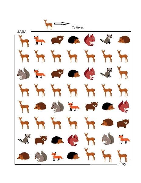 orman_hayvanları_takip_puzzle