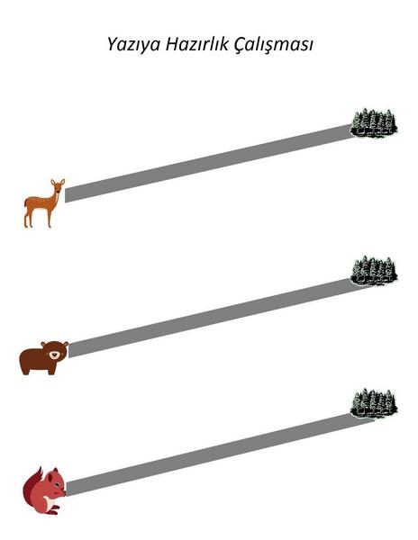 orman_hayvanları_yazıya_hazırlık