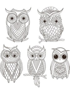 owls_color_pages_for_preschoolers