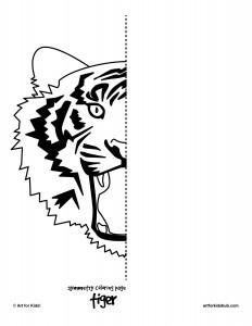 tiger-symmetry