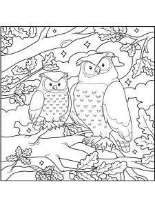 wonderful_owls_color_pages