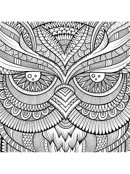 Baykuş Boyama Sayfaları En Güzel Baykuş Boyamaları Evimin Altın Topu