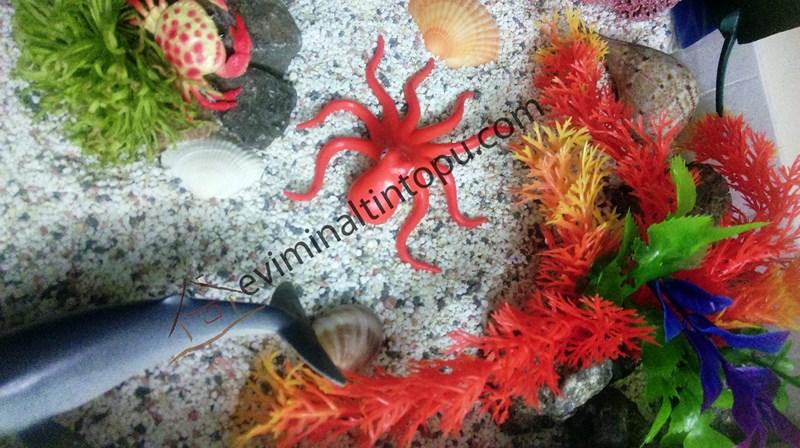 eğlenceli_deniz_hayvanları_etkinlikleri