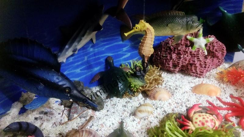montessori_okyanus_duyusal_havuzu
