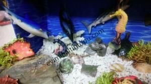 montessori_okyanus_hayvanları_etkinlikleri