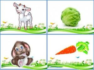okul_öncesi_hayvanlar_ne_yer_çalışması