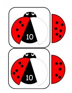 uğur_böceği_sayı_ (2)