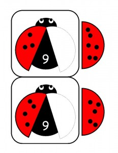 uğur_böceği_sayı_aktivite