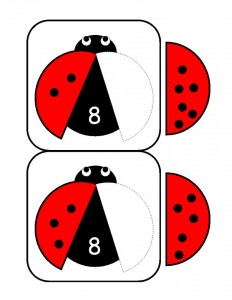 uğur_böceği_sayı_aktivitesi