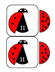 uğur_böceği_sayı_kolay_matematik (2)