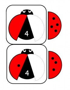 uğur_böceği_sayı_kolay_matematik
