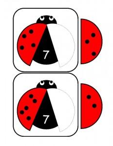 uğur_böceği_sayı_matematik