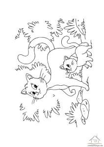 ana sınıfi kedi boyama çalışmaları