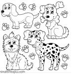 Köpek Boyama Arşivleri Evimin Altın Topu Evimin Altın Topu