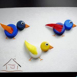 kapaklardan kuşlar