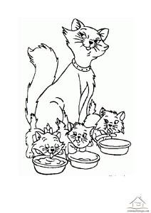 kedi boyama aktiviteleri