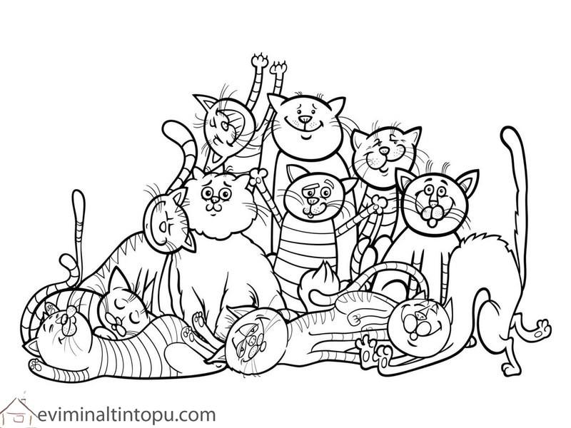Kedi Köpek Boyama Sayfaları En Güzel Köpek Boyamaları Evimin Altın