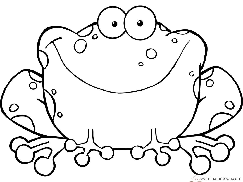 Kurbağa Boyama Oyunu Resimlere Göre Ara Red