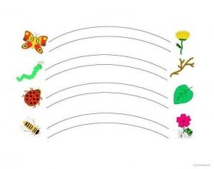 renkli çizgi örnekleri