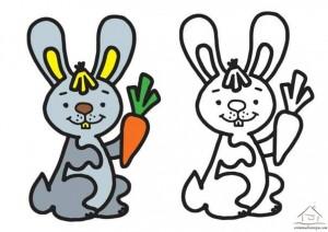 tavşan boyama çalışması