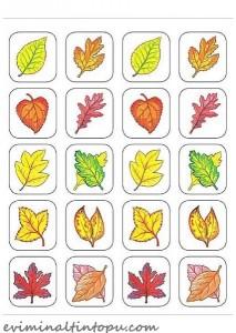 okul öncesi hafıza oyun kartları (1)