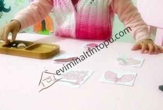 okul öncesi organlarımız eşleştirme kartları (3)