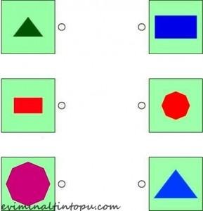 şekiller ile eşleştirme çalışması okul öncesi (1)
