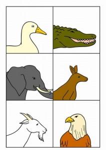 hayvanlar gövde ayak eşleştirme etkinliği (4)
