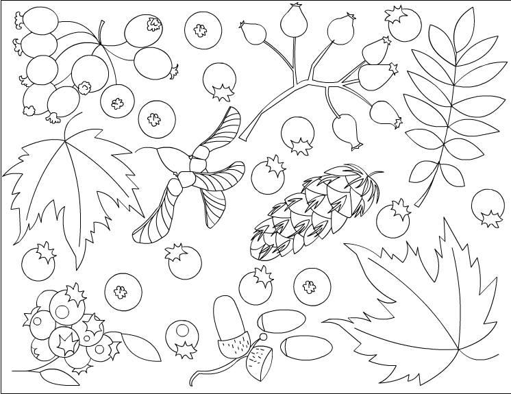 Photo of Sonbahar boyama çalışmaları