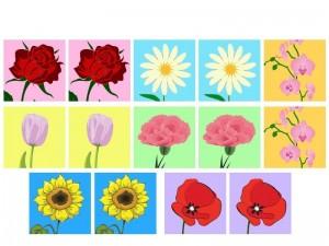 çiçekler hafıza kartları