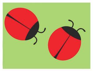 uğur böceği oyun hamuru matı
