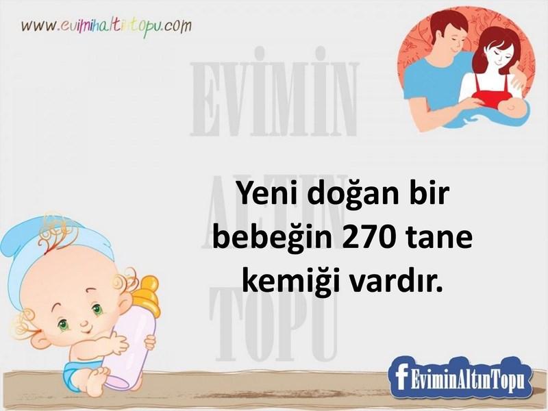 bebeğe yönelik ilginç bilgiler