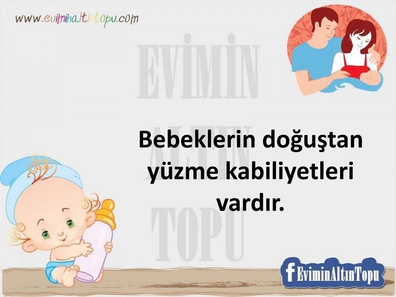 bebekler ile ilgili