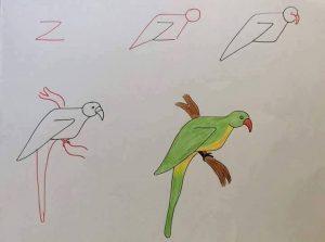 harflerden kuş çizimleri