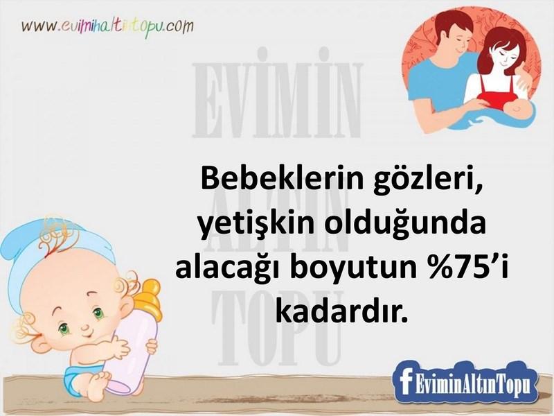 yenidoğan bebekler hakkında genel bilgiler