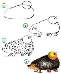 adım adım kirpi çizimi