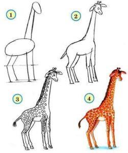 adım adım zürafa çizimi