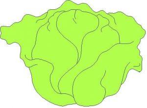 eglenceli-sebze-kartlari-ve-boyama-sayfalari-16