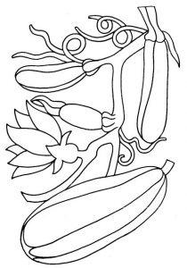 eglenceli-sebze-kartlari-ve-boyama-sayfalari-24
