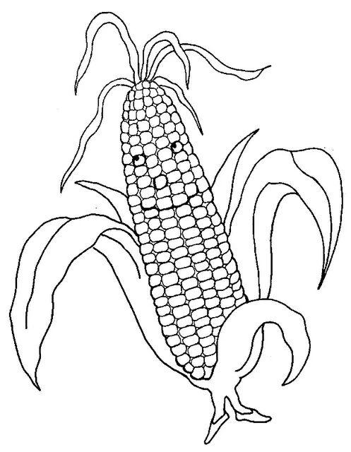 Eğlenceli Sebze Kartları Ve Boyama Sayfaları Boyama çalışmaları