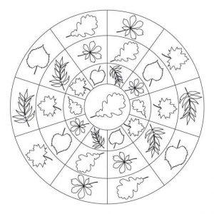 sonbahar-mandala-etkinlikleri-29