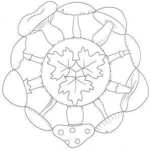 sonbahar-mandala-etkinlikleri-33