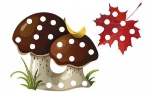 sonbahar-pompom-etkinlikleri-1